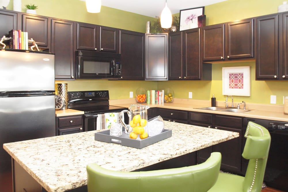 Enjoy our Apartments that are Great for entertaining with a Kitchen at Palmera Apartments