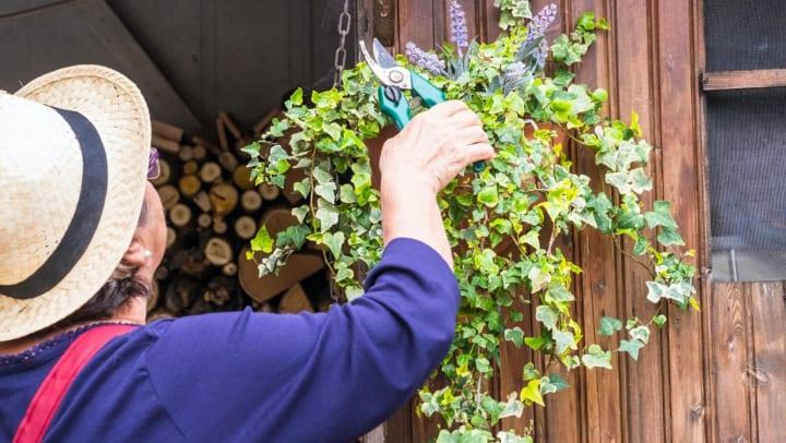 Resident gardening at {{location_name}}