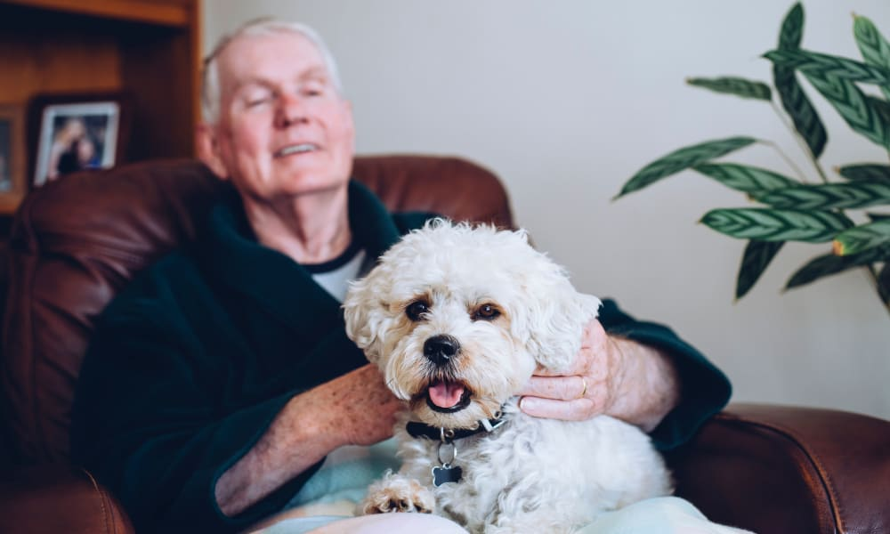 A resident and his dog at Patriots Glen in Bellevue, Washington.