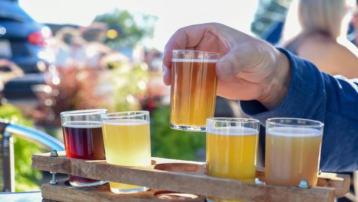 Flight of beers near Olympus Harbour Island in Tampa, Florida