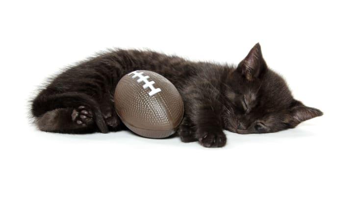 A black kitten sleeps while cuddling a football