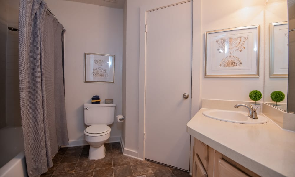 The Trace of Ridgeland offers spacious bathrooms in Ridgeland, Mississippi