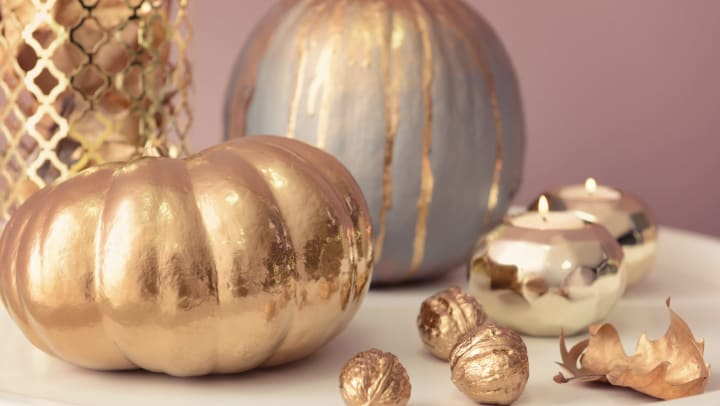 Beautiful golden pumpkins on a white counter top at Olympus Grand Crossing