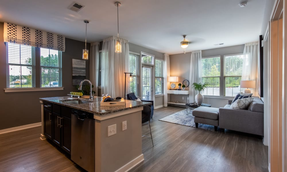 Alta Brighton Park offers a living room with kitchen in Summerville, South Carolina