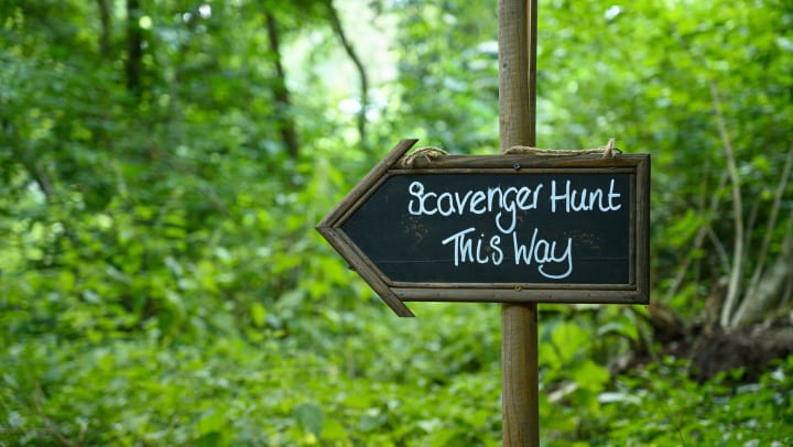 Wooden sign in front of trees that reads Scavenger Hunt This Way located near Olympus Fenwick