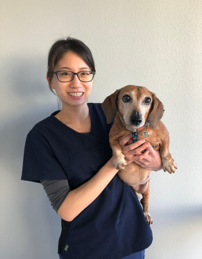 Dr. Stephanie Chen at Value Pet Clinic - Renton