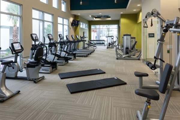 Fitness center at Jefferson Westshore in Tampa, Florida