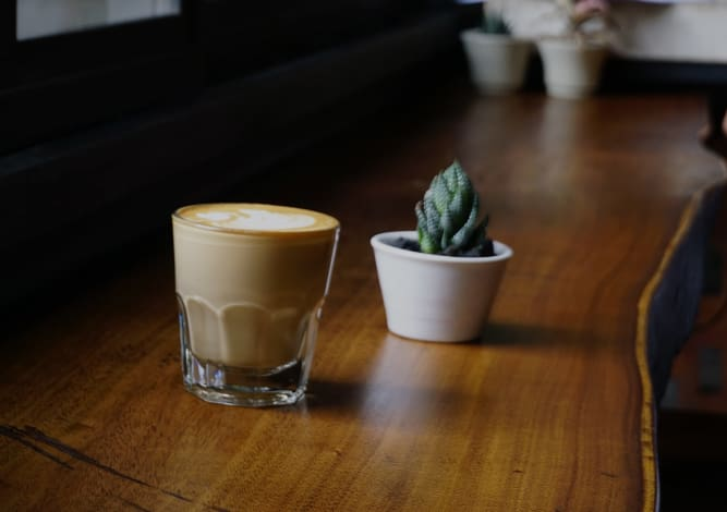 Plant and espresso at Alta Trinity Green in Dallas, Texas