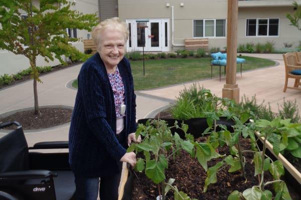 Respite care for seniors in Mukilteo