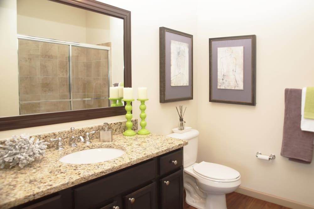 Guest bathroom with large vanity mirror at Palmera Apartments in Mason, Ohio