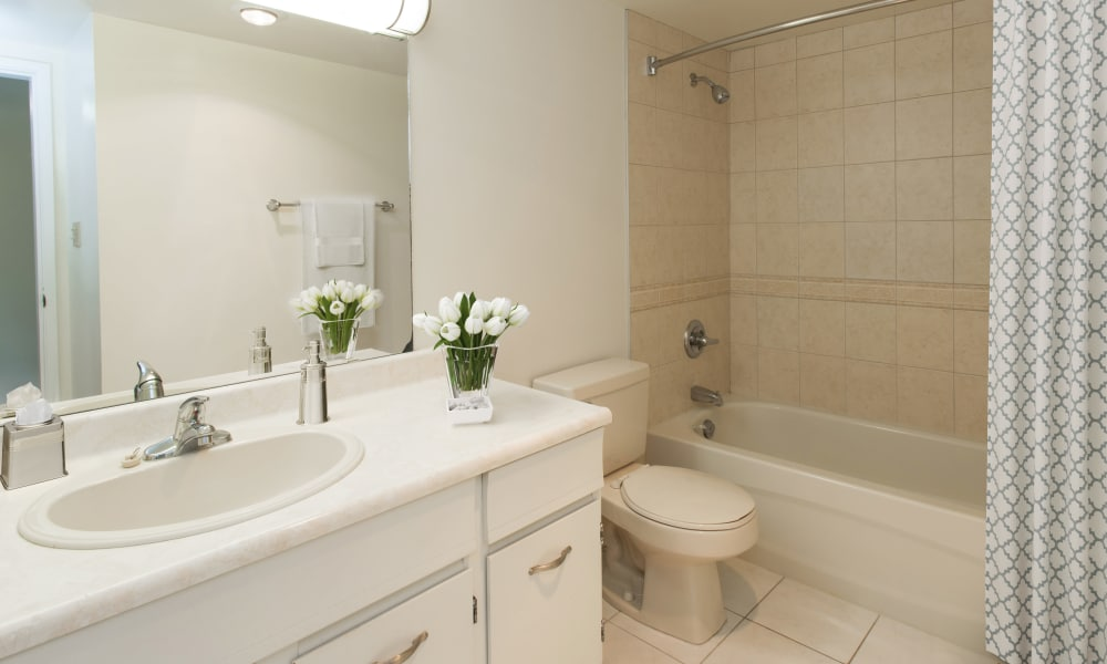 Fraser Tolmie Apartments offers a renovated bathroom in Victoria, British Columbia