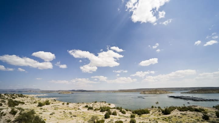 View of a lake in a desert with an expansive blue sky above and a dry landscape with shrubs in the foreground