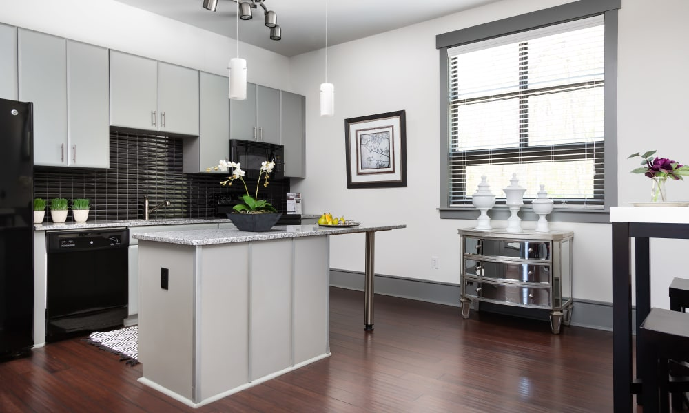 Luxury kitchen area at Chapel Hill North in Chapel Hill