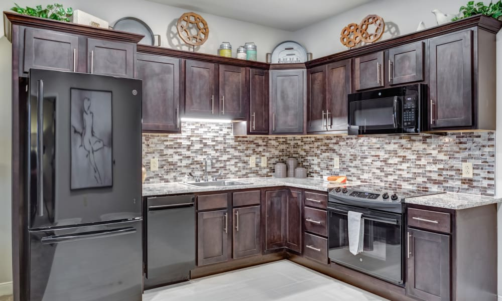 Stainless steel appliances in an apartment kitchen at The Oaks at Belmont in Belmont, Michigan