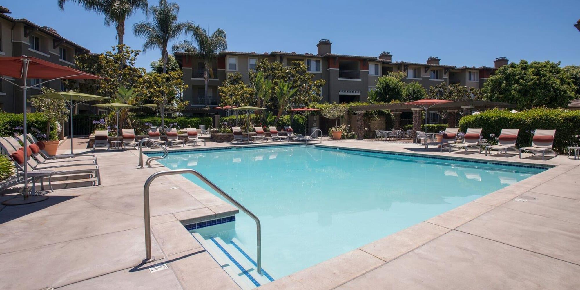 Apartments at Alicante Apartment Homes in Aliso Viejo, California