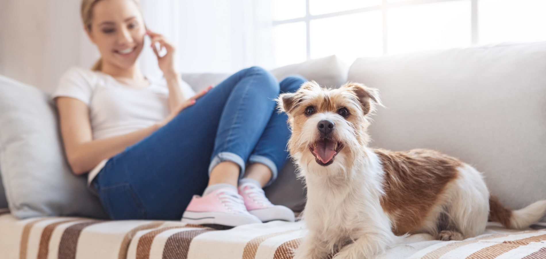 Woman and dog on couch at Callio Properties