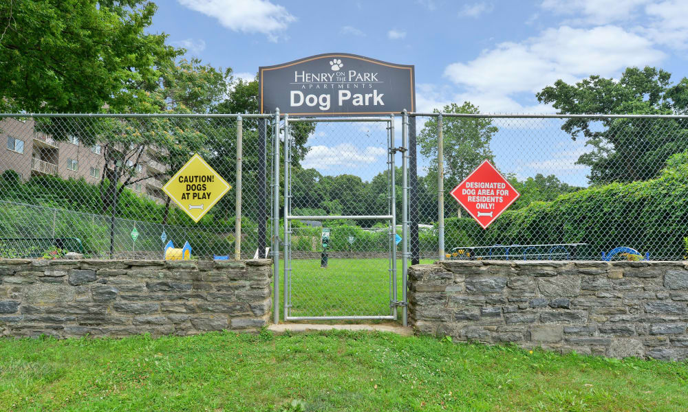 Enjoy Apartments with a Dog Park at Henry on the Park Apartment Homes
