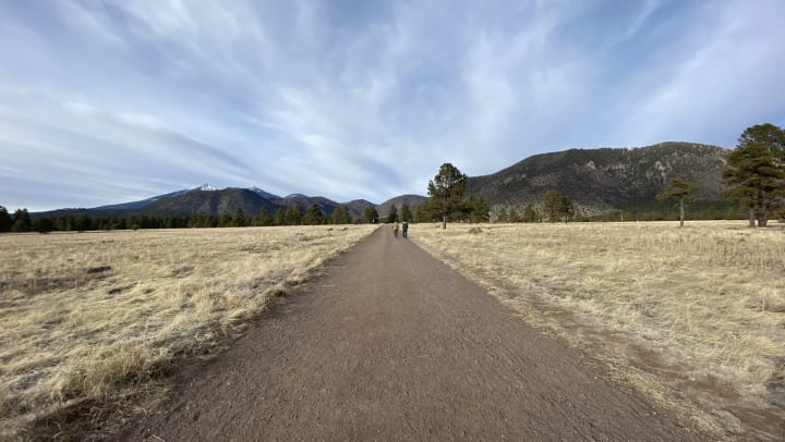A dirt trail running through Buffalo park in Flagstaff, Arizona.