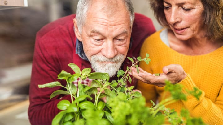 How Alzheimers Impacts the 5 senses