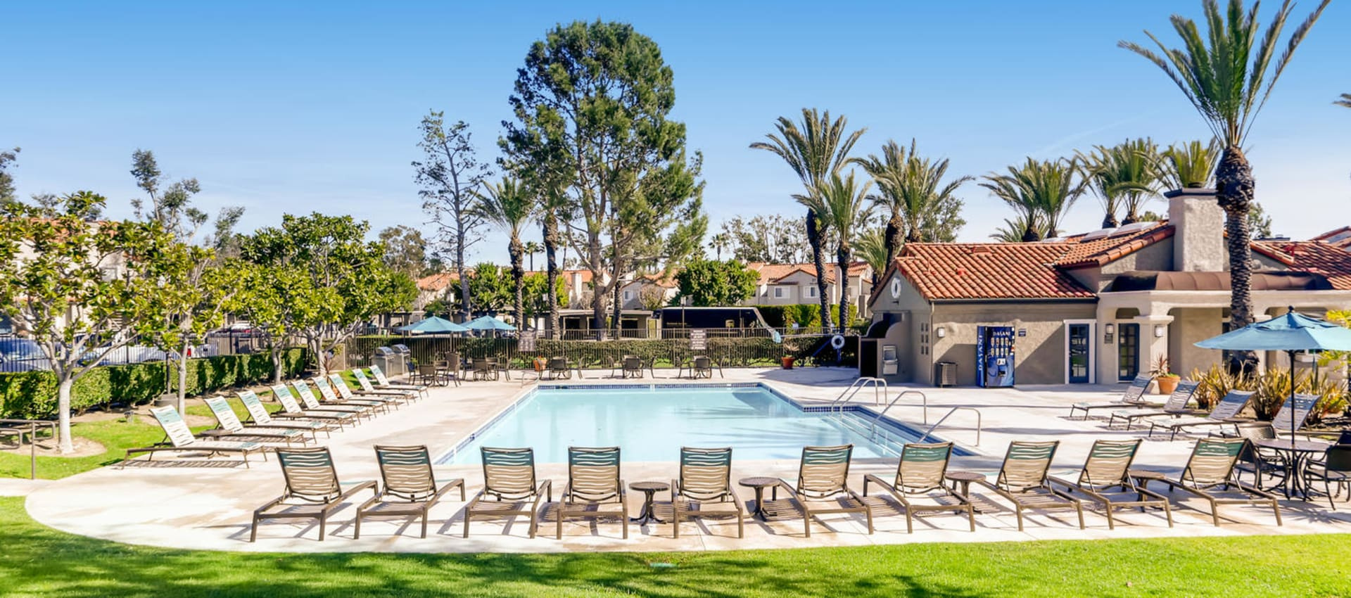 Expansive Pool Deck with Spas