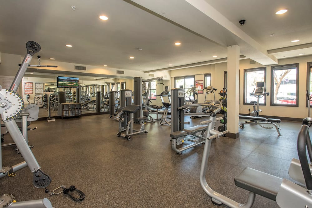 Spacious fitness center with plenty of workout stations at Paragon at Old Town in Monrovia, California