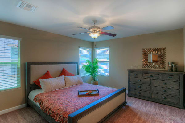 Model bedroom with modern decor at BB Living at Higley Park in Gilbert, Arizona
