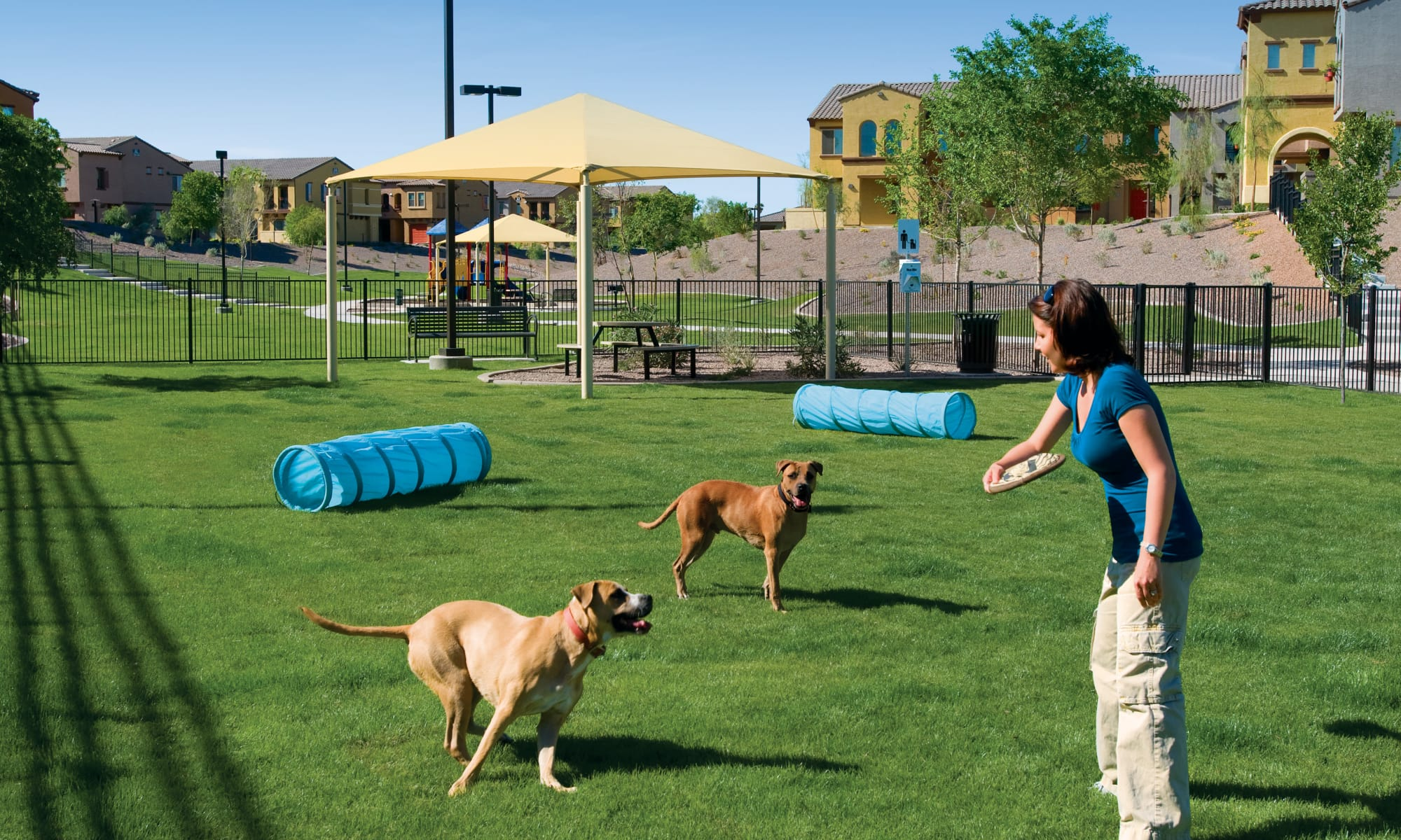 Townhomes in Tempe, Arizona at Ravenwood Heights