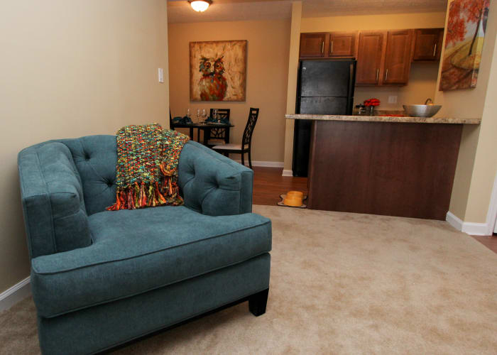 living room in The Bluffs at Epps Bridge luxury apartments
