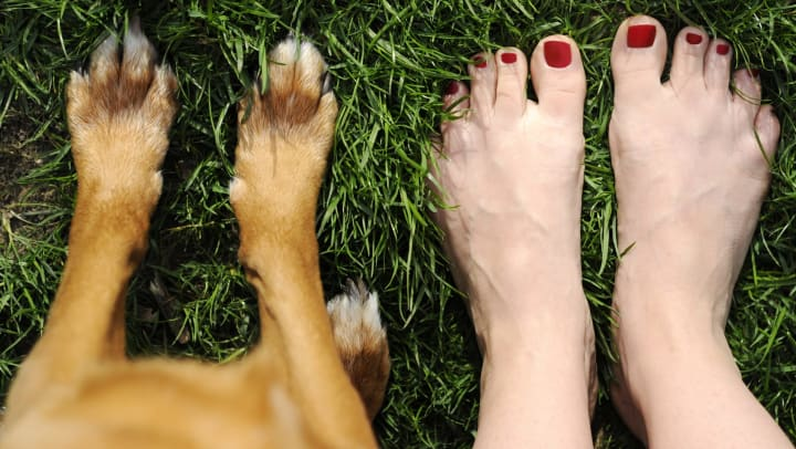 Woman and dog firmly planting their bare feet in the grass at Tacara at Westover Hills