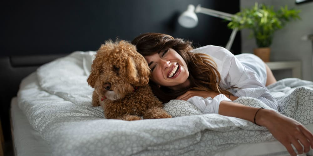 Happy resident laying in bed with their dog at Two Twelve Clayton in Clayton, Missouri