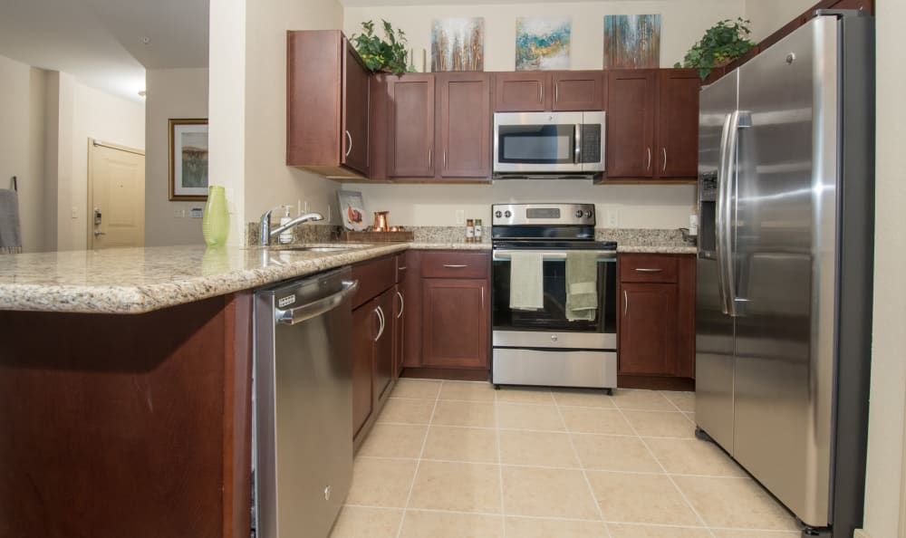 Large kitchen with stainless steel appliances at Villas Tech Ridge in Pflugerville, Texas