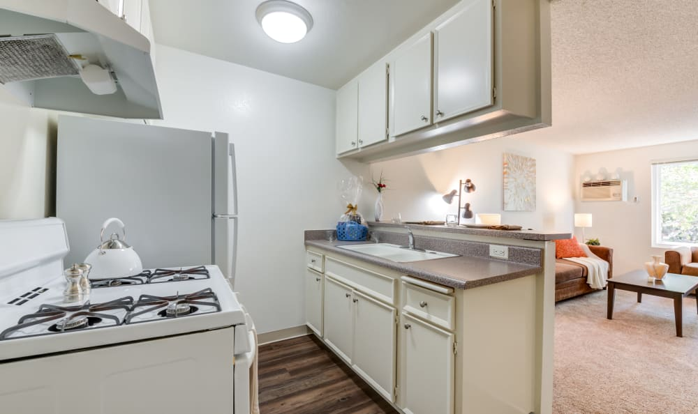 Studio apartment kitchen at Cypress Point