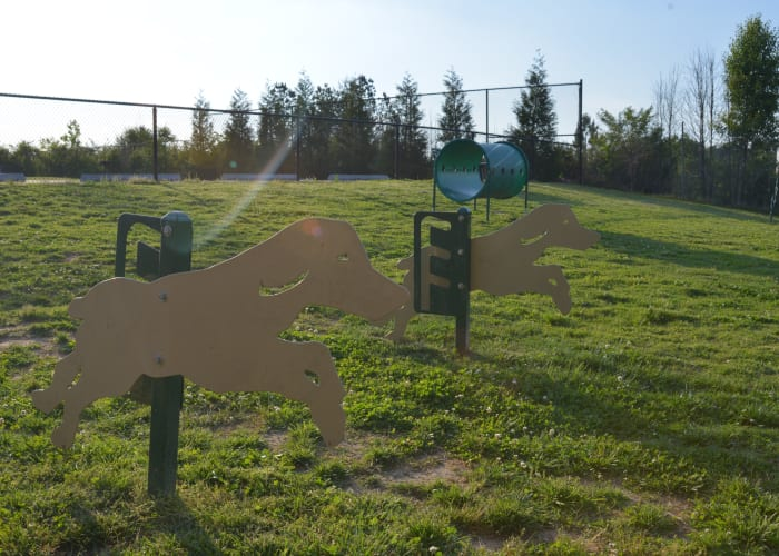 Dog park at The Hills at Oakwood Apartment Homes in Chattanooga, Tennessee