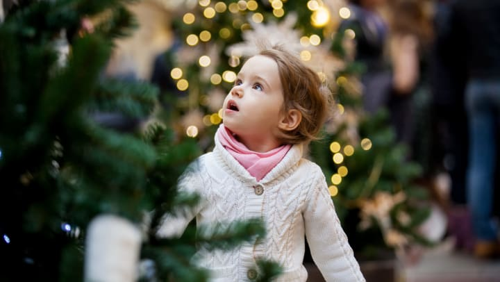 Cute little girl looking at the Christmas trees in a tree lot near Olympus on Broadway