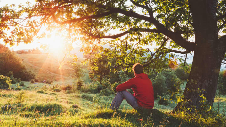 A man sitting under a tree watching the sun crest a hill.