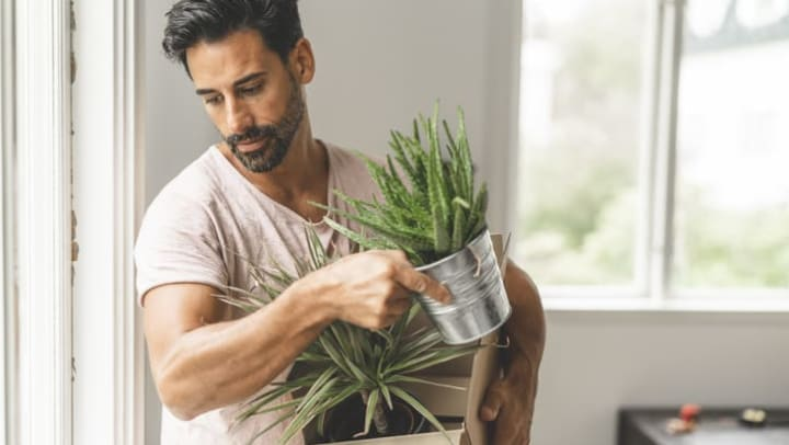 Man holding two plants in his apartment at {{location_name}} in {{location_city}}, {{location_state_name}}