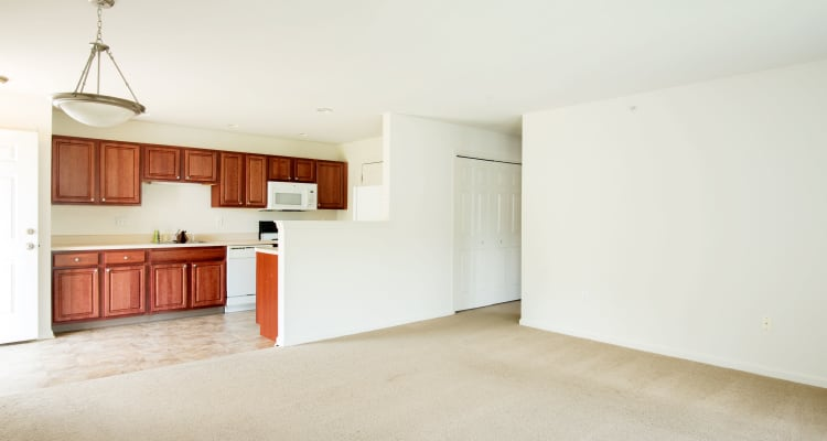Apartment Spacious Interior at Forrest Pointe Apartments and Townhomes in East Greenbush