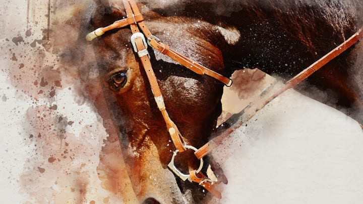 Beautiful painting of a horse at Mossrock Gallery near Olympus Sierra Pines in The Woodlands, Texas