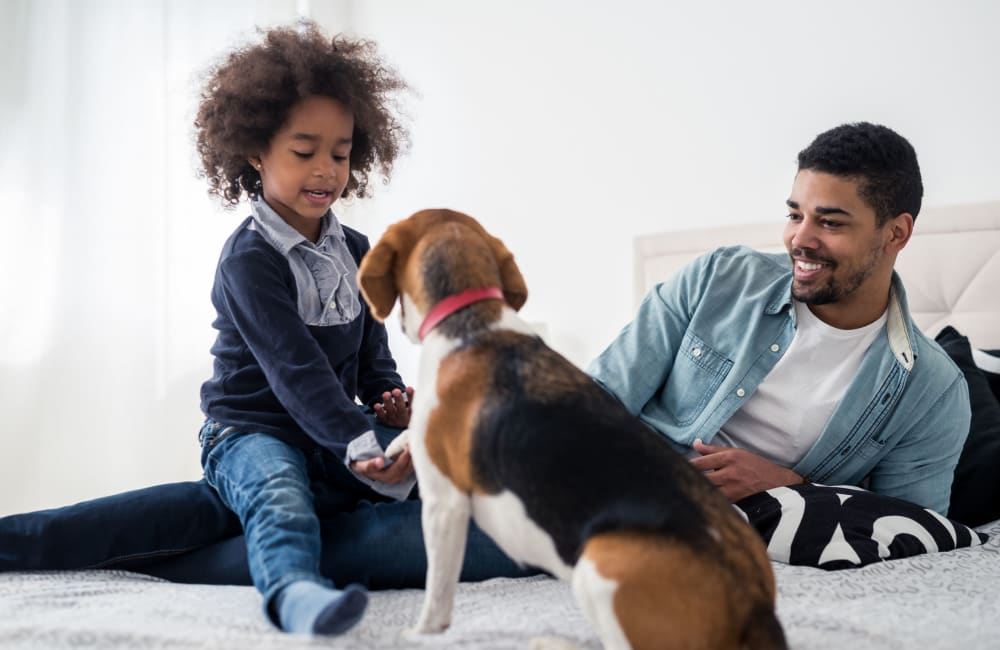 Family and their dog enjoying their new home at Waters Edge Apartment Homes in Concord, North Carolina