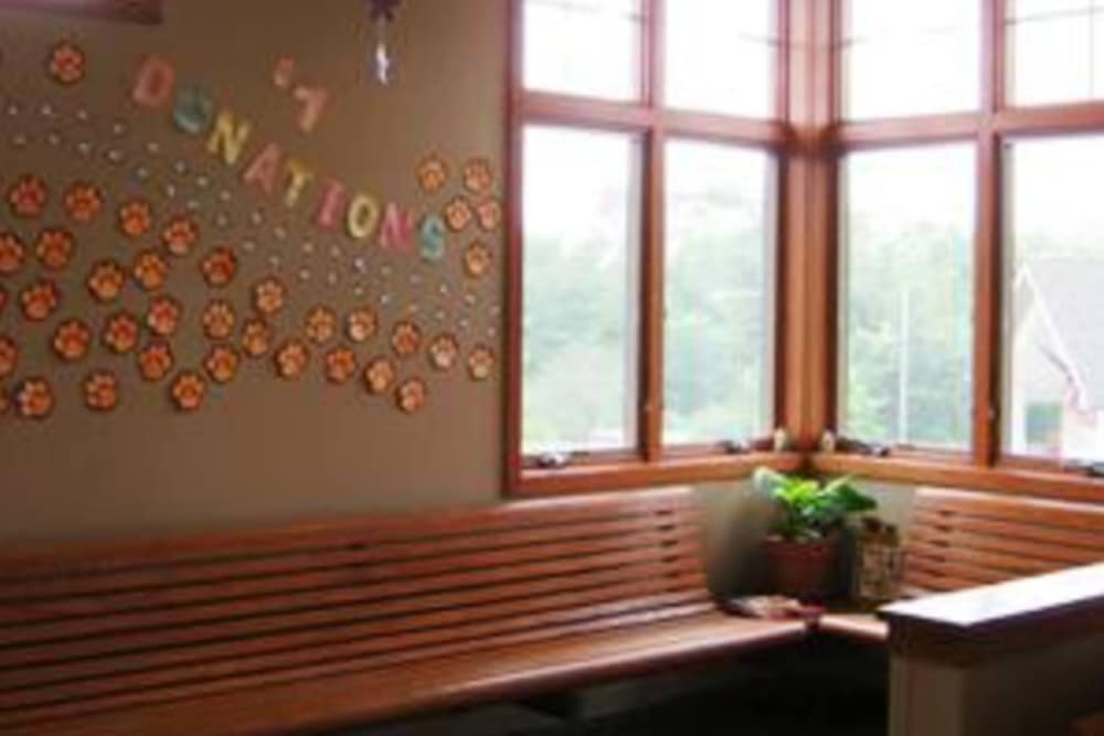 Large lobby windows at Niles Veterinary Clinic in Niles, Ohio