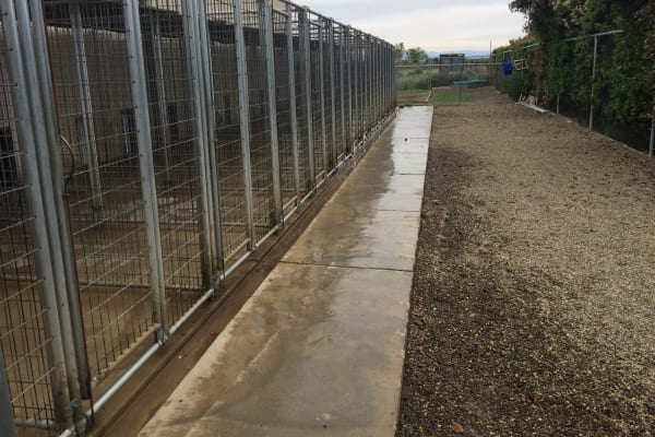Outdoor dog kennels at University Pet Resort in Merced, California