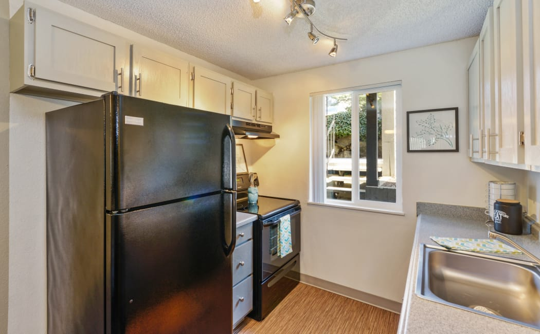 Black appliances and custom track lighting in model home at The Row
