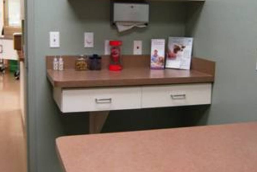 Counter top in exam room at Niles Veterinary Clinic in Niles, Ohio