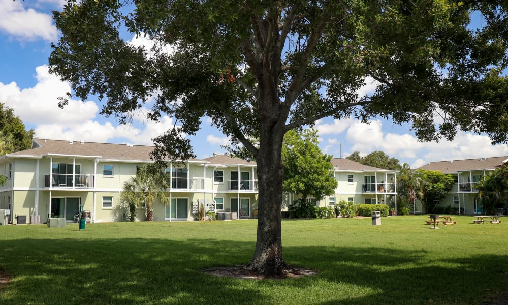 Beautiful courtyards at Ridgeview Apartments in Seminole, Florida