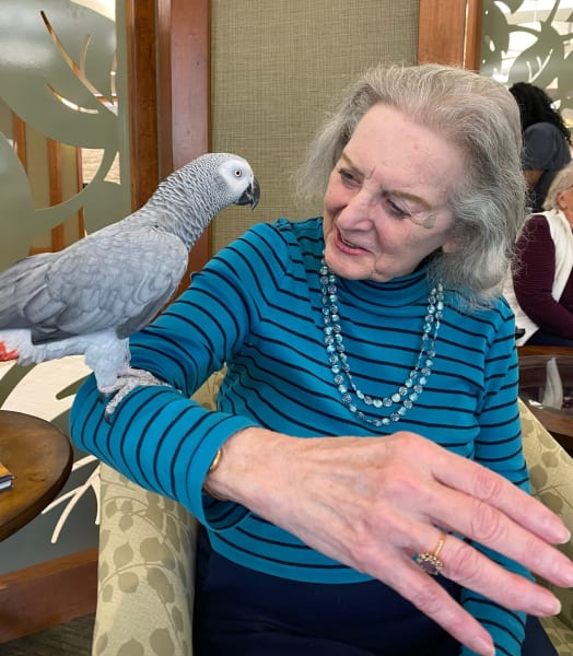 One Woodstock resident shows her biggest smile as she enjoys the exotic bird show!