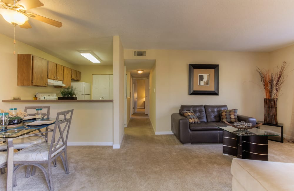 Spacious layout with plush carpeting at Enclave at North Point Apartment Homes in Winston Salem, North Carolina