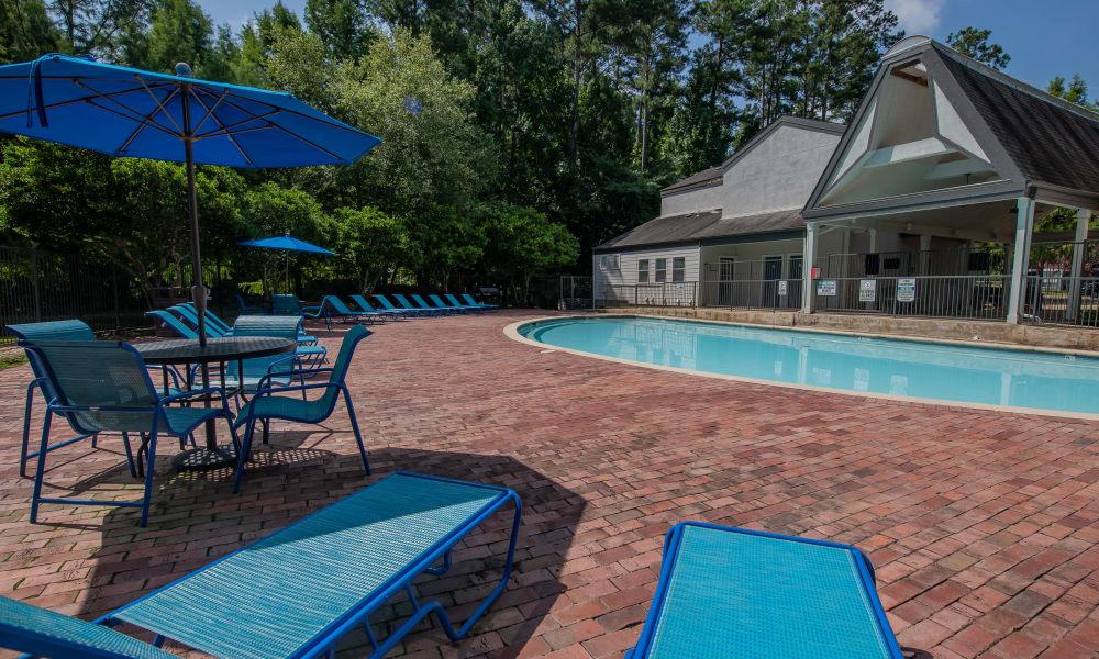 The community pool at The Pointe of Ridgeland in Ridgeland, MS