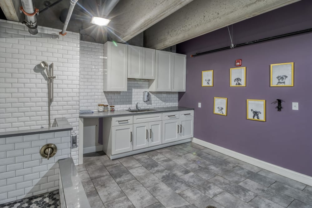 Dog Washing Room at Tribeca STL | Luxury Apartments in St. Louis, Missouri