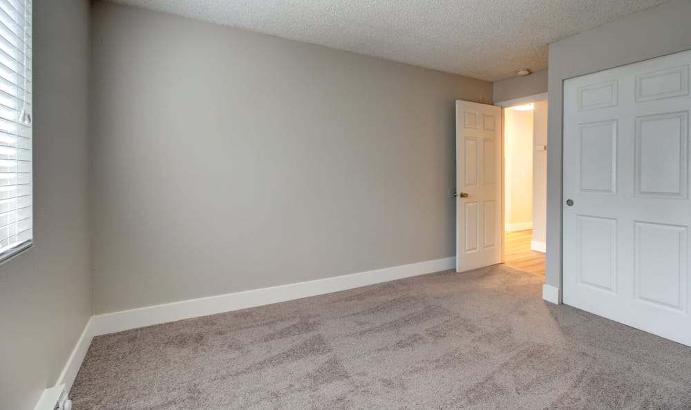 Accent wall and large closet in bedroom of apartment home at The Boulevard at South Station Apartment Homes in Tukwila, Washington
