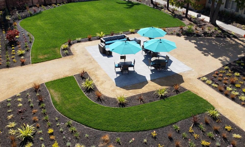Garden Area at Vue Alameda